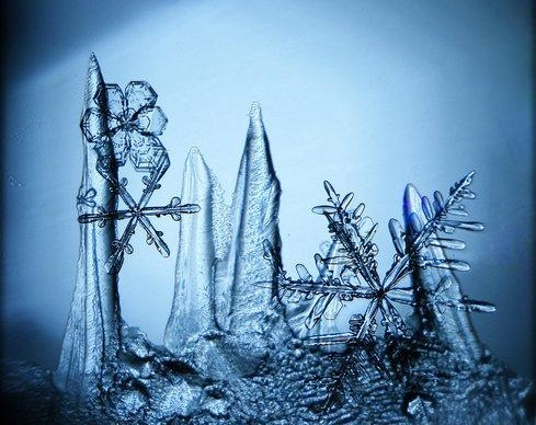 В декабре «Эрарта» откроет три художественные выставки