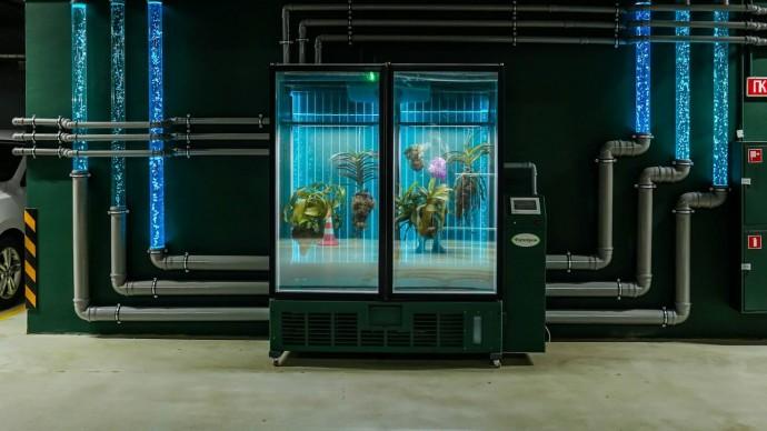 В «Зарядье» на подземной парковке появится инсталляция Марины Звягинцевой