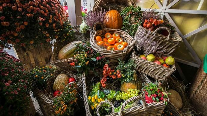 Петербужцев угостят новозеландскими устрицами и заячьими почками на рынке выходного дня