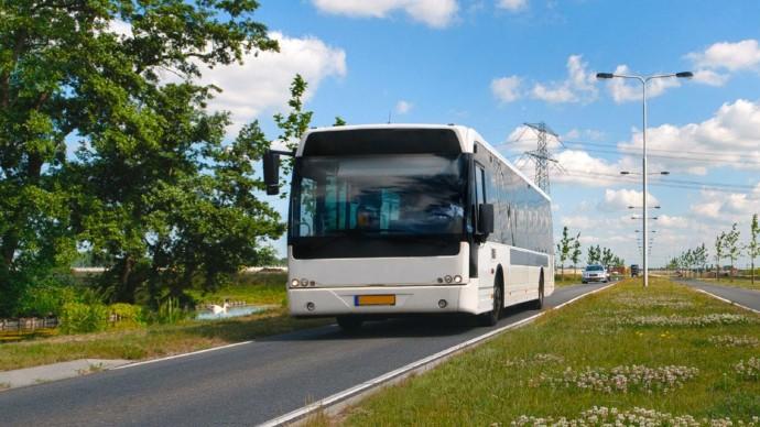 Новые экологичные автобусы запустят в Санкт-Петербурге