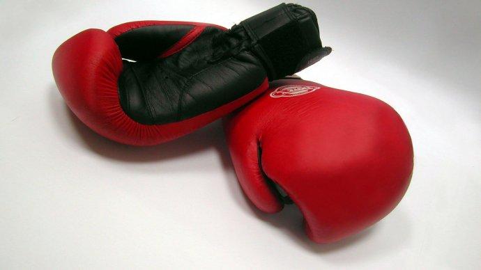 В «Сокольниках» устроят праздник бокса