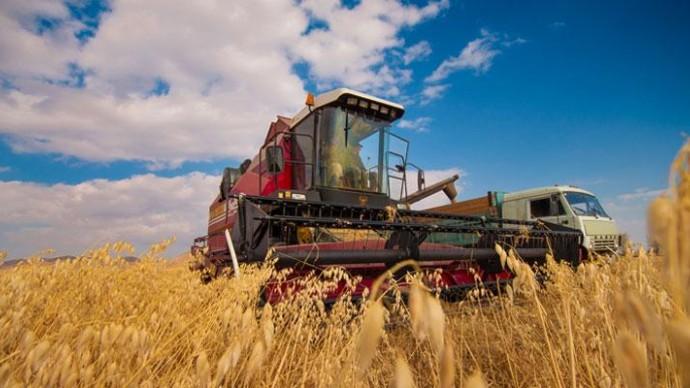 Минтруда расширит список сельских профессий с увеличенной пенсией