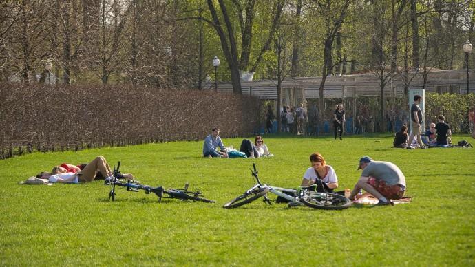 Синоптики рассказали, каким будет май в Москве