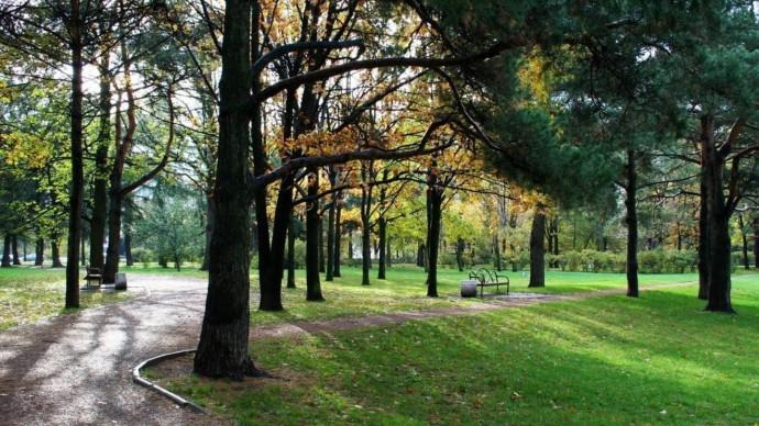 В Москве появится больше парковых зон