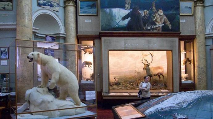 Музей Арктики и Антарктики отреставрируют в Санкт-Петербурге