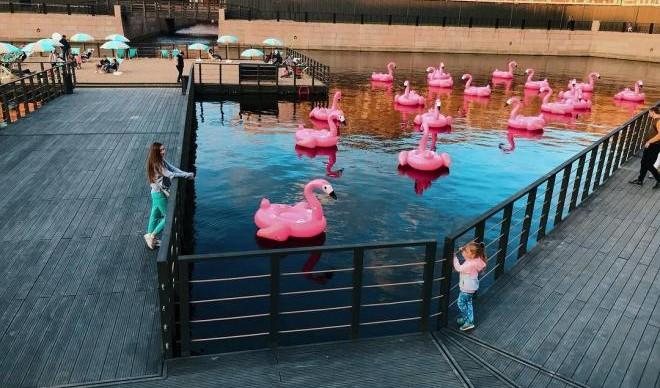 В центре города открыли пляж с розовыми фламинго
