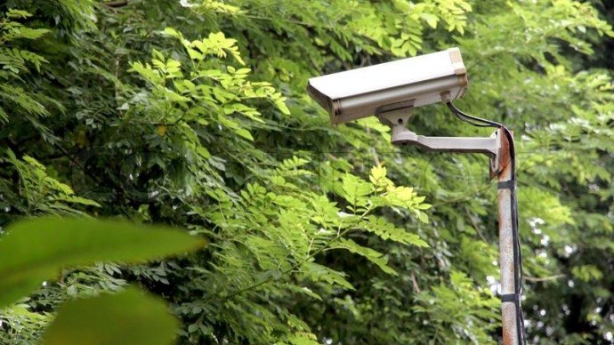 «СтопХам» установит скрытые камеры, чтобы следить за парками