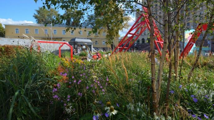 На онлайн-дискуссии «Цветочного джема» поговорят о терапевтических садах