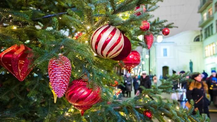 В Казани установят новогодние ели