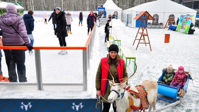 В «Лапландия-парке» в Петербурге заработал каток c оленями