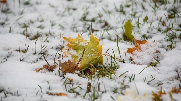 Погода в Москве сильно поменяется во второй половине недели