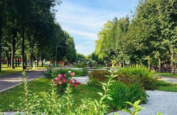 Всемирный день чистоты пройдет 18 сентября в чебоксарском Парке Николаева