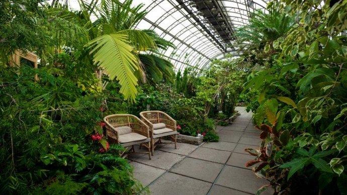 В Таврическом саду пройдут бесплатные лекции по ландшафтному дизайну