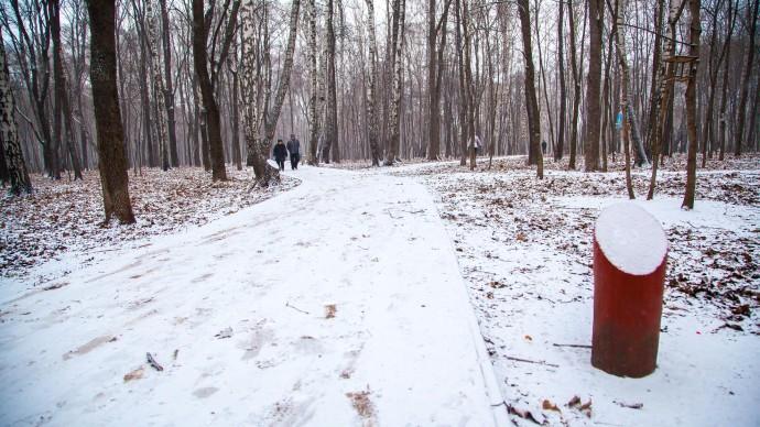 150 км лыжных трасс и троп здоровья появится в 26 московских парках