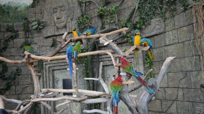 Минский зоопарк приглашает гостей на квест-приключение