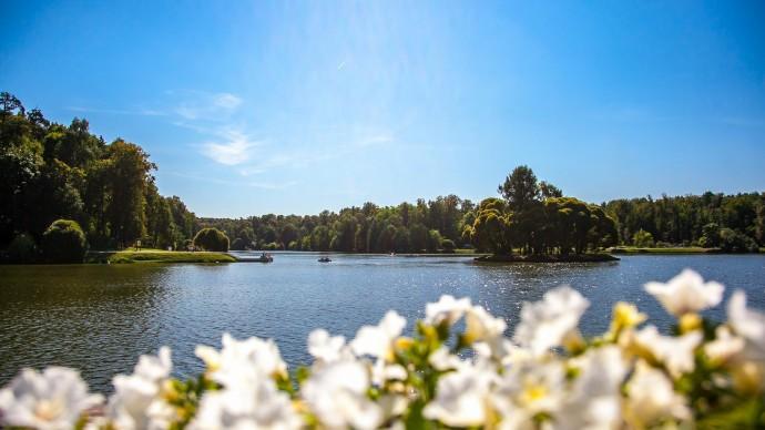 Оранжерейные пруды в «Царицыне» ждет реставрация