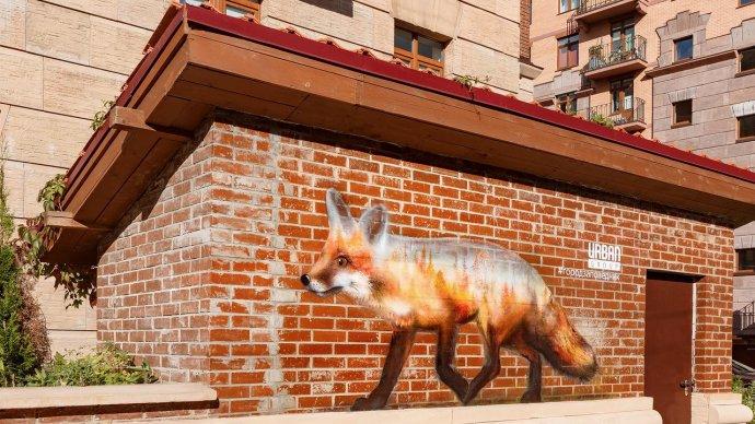 В Химках появились граффити с лисой, медведем, cовой и другими животными