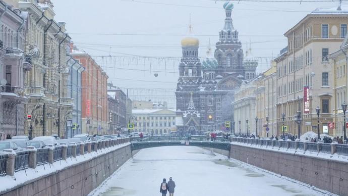Центр Санкт-Петербурга украсят живыми елями