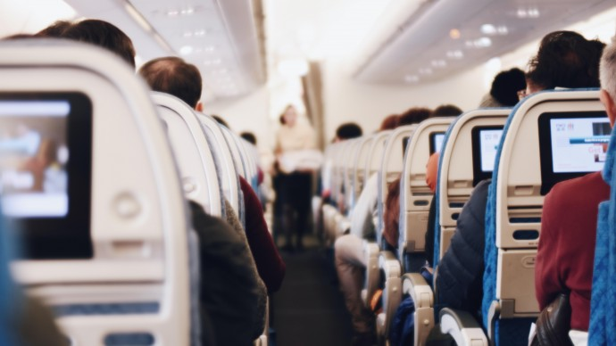 S7 Airlines разрешили провозить домашних животных на соседнем пассажирском кресле