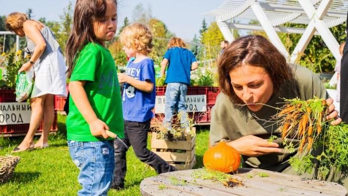 В Парке Горького собрали урожай «Общественного огорода»