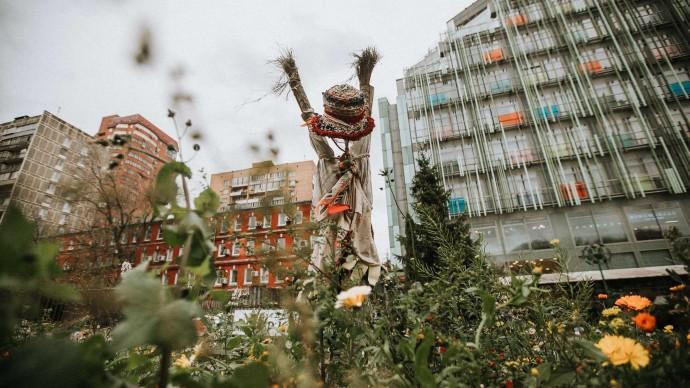 В «Аптекарском огороде» пройдет осенний фестиваль цветов