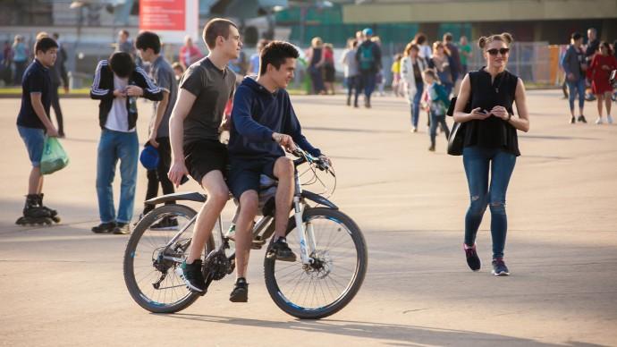 60 километров велодорожек планируют оборудовать в Петербурге