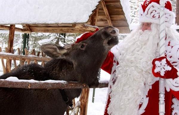 В Санкт-Петербург приедет Дед Мороз из Великого Устюга