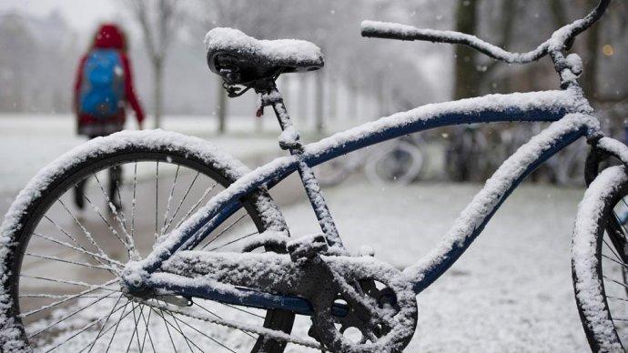 В «Сокольниках» можно будет оставить велосипед на зиму