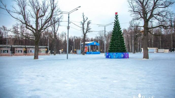 Праздничная зимняя программа в Измайловском парке