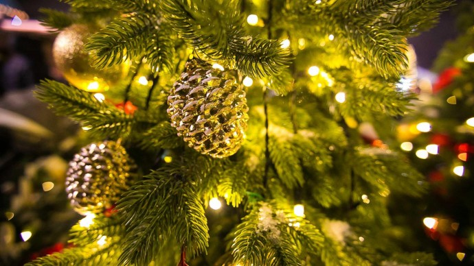 Рождественская ярмарка с мастер-классами и спектаклями пройдет в Пушкинском музее