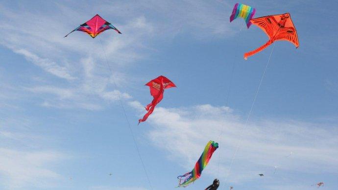 В парке 300-летия Петербурга устроят фестиваль воздушных змеев