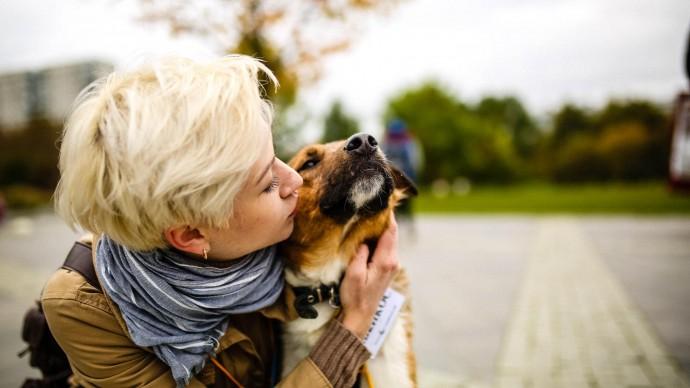 В «Садовниках» проведут благотворительную выставку собак