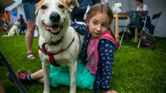 Породистые собаки поборются за титул Чемпиона Беларуси