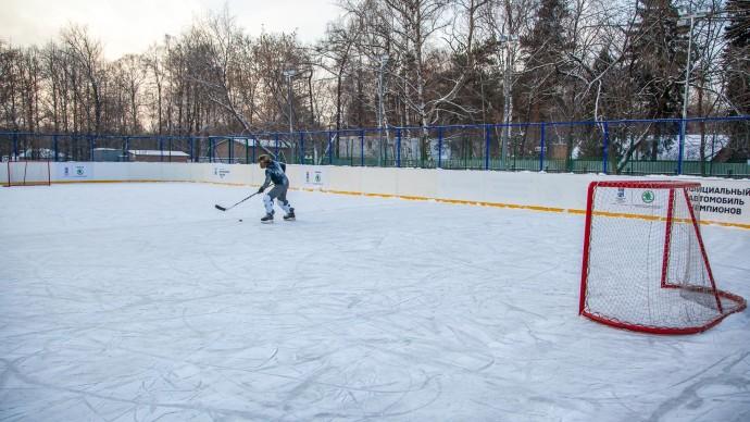 В усадьбе «Люблино» откроют хоккейную площадку с искусственным льдом