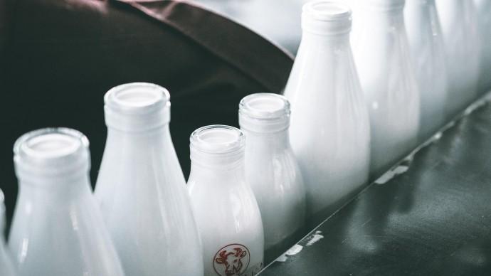 Продукция без заменителей молочного жира станет заметнее на прилавках