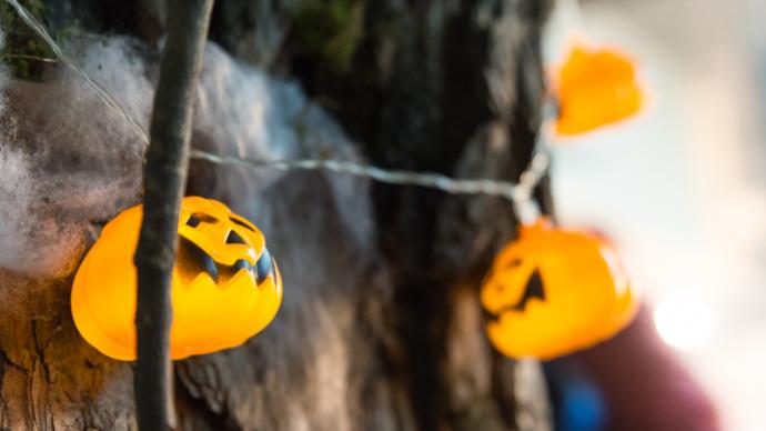 Хеллоуин в Минске отпразднуют мистическим шоу