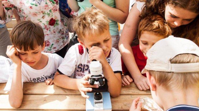 Зеленая школа парка Горького запускает летний кампус