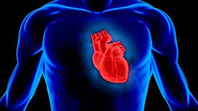 На ВДНХ вновь будут бесплатно проверять сердце, глаза и стопы