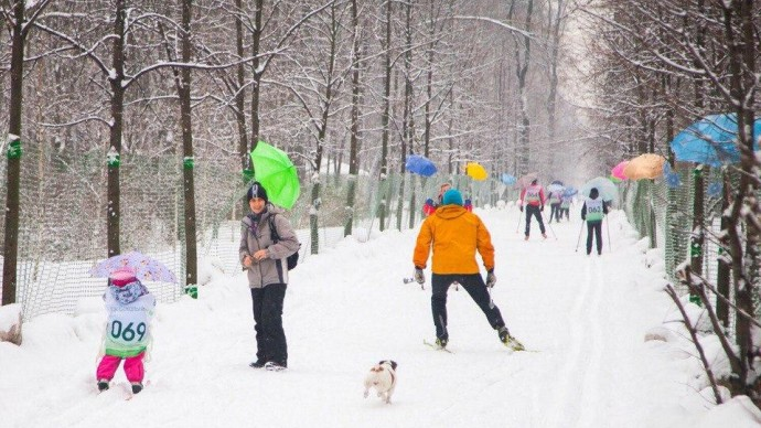 В парках Москвы готовят к сезону лыжные трассы