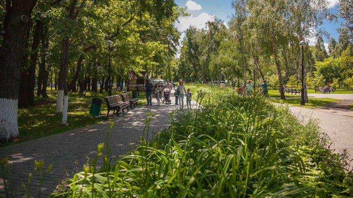 В парке Гагарина пройдет открытие серии занятий по баскетболу
