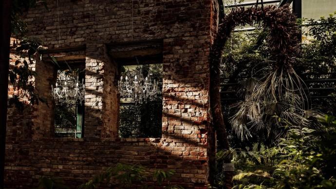 Уникальная экспозиция открывается в Аптекарском огороде