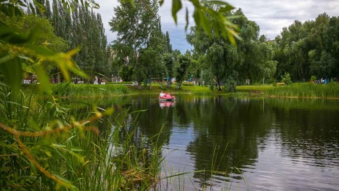 В Самаре в Воронежские озера запустили карасей