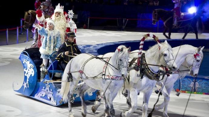 Казанский цирк приглашает в гости к Деду Морозу