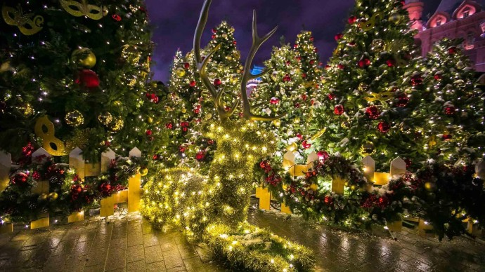 Новогодние елки для детей в Химках