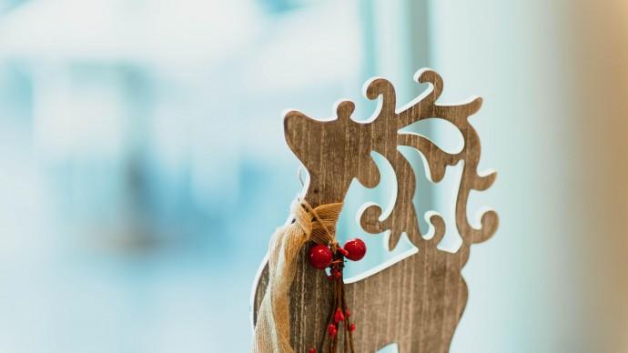 Рождество в саду Баумана