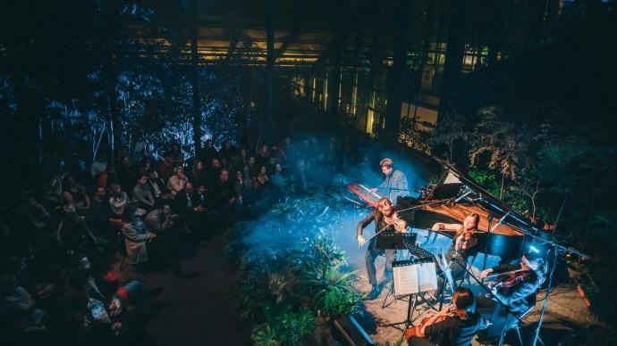 Концерт «Между небом и землей» в Ботаническом саду МГУ