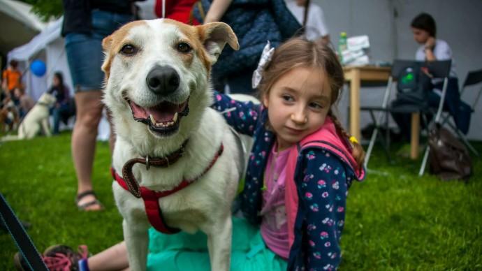 В «Кузьминках» устроят выставку собак из приютов