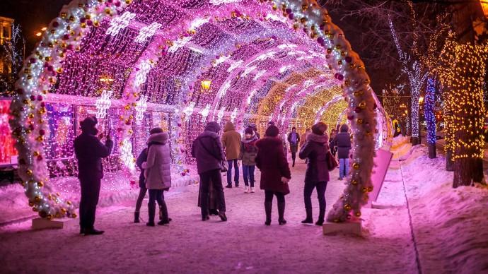 Город украсят 300 новогодних елей