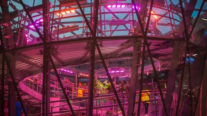 Во Флорариуме парка «Зарядье» появится новая ботаническая коллекция