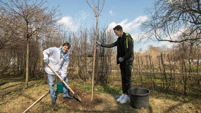 Жителей Казани приглашают на высадку леса в выходные